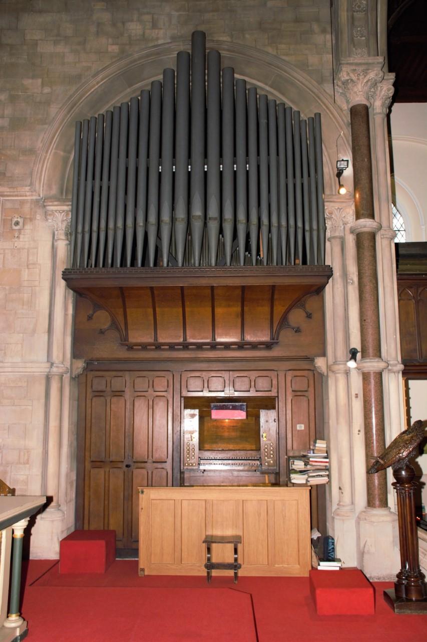 David organ (1)