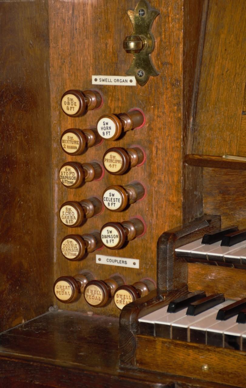 David organ 2 (1)