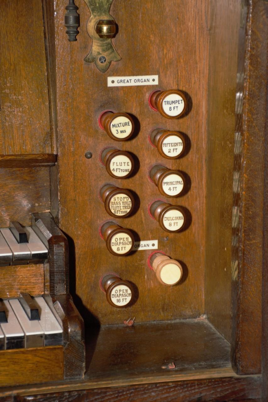 David organ 3 (1)