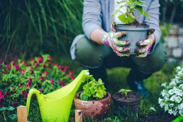 Gardening_03