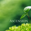 Ascension homepage