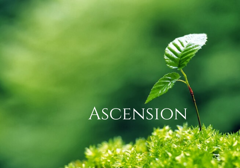 EASTER 7 Ascentiontide
