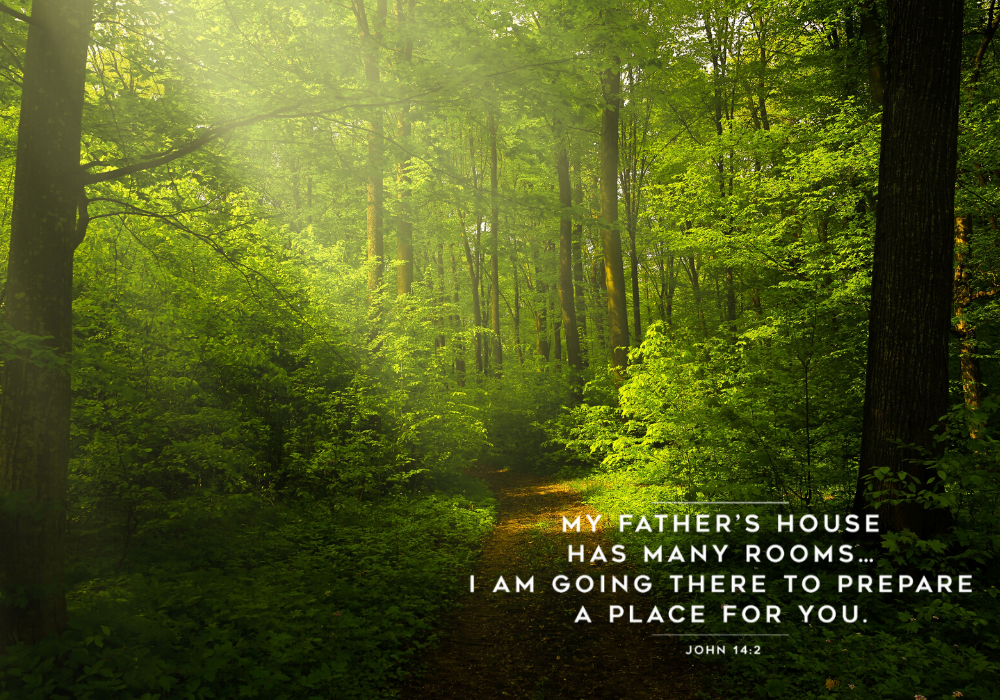 Home Worship 10 May