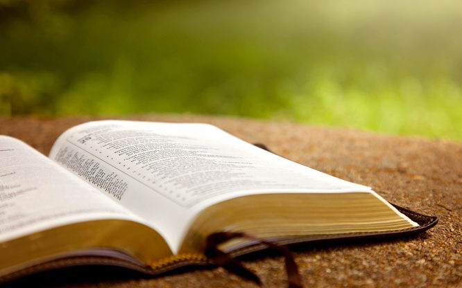 An Opened Bible on a Table in a Green GardenAn Opened Bible on a Table in a Green Garden